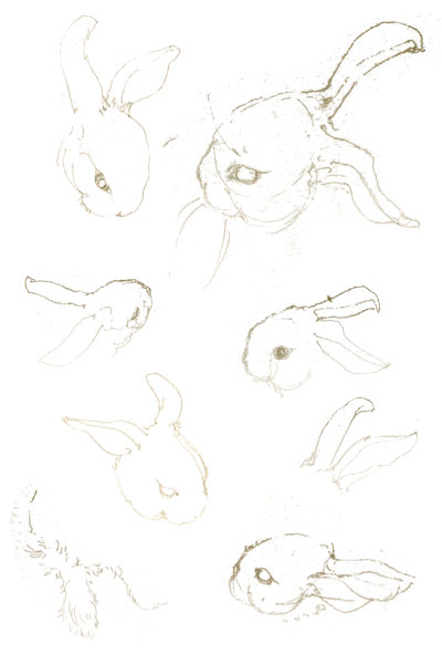 Bunny-sketches-blog